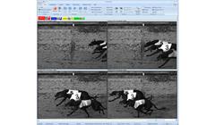 Imaging & Analysis Software