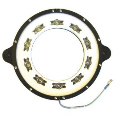 Monster Light High Brightness LED Cyan Ring Lights - MRL8.5-505
